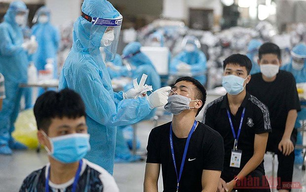 Health Ministry asked to quickly issue self-testing guidelines for firms hinh anh 1