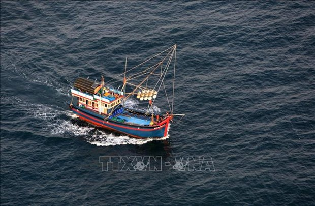 Da Nang spends over 20 bln VND for offshore fishing vessels hinh anh 1