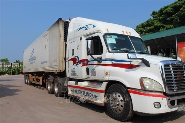 Rapid COVID-19 test waived for truck drivers at Mong Cai Int't Border Gate hinh anh 2