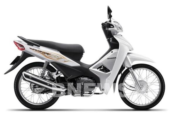 Honda Vietnam sees slight increase in motorbike sales hinh anh 1