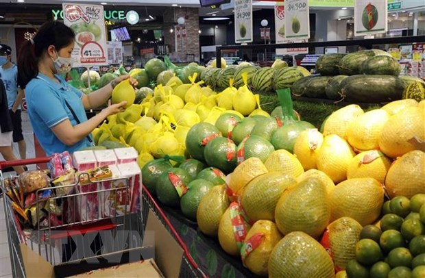 WB lowers Vietnam's GDP growth forecast to 2-2.5 percent this year hinh anh 1