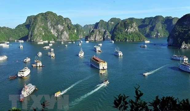Deputy PM asks tourism sector to take firm steps to reopen hinh anh 1