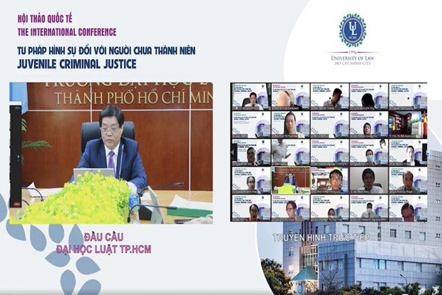 Int'l webinar talks criminal justice for juveniles hinh anh 1