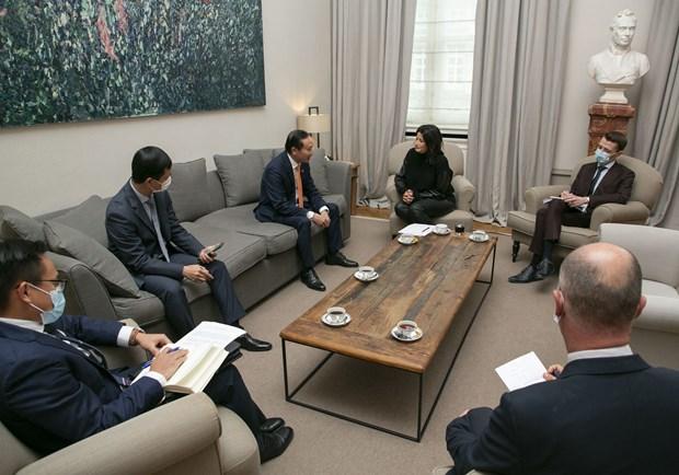 Plenty of room to Vietnam, Belgium to expand ties: Diplomat hinh anh 2