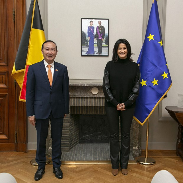 Plenty of room to Vietnam, Belgium to expand ties: Diplomat hinh anh 1