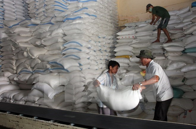 Vietnam, Thailand win bid to supply rice to Philippines | Vietnam+