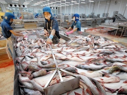 Catfish skin - a promising export   Vietnam+ (VietnamPlus)