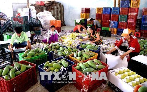 Vietnam increases export of industrial, aquaculture products
