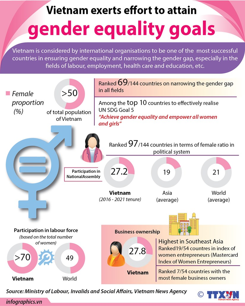Vietnam exerts effort to attain gender equality goals hinh anh 1