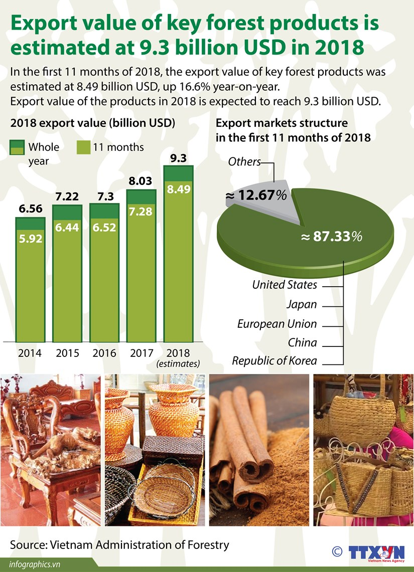 Export value of key forest products estimated at 9.3 bln USD in 2018 hinh anh 1