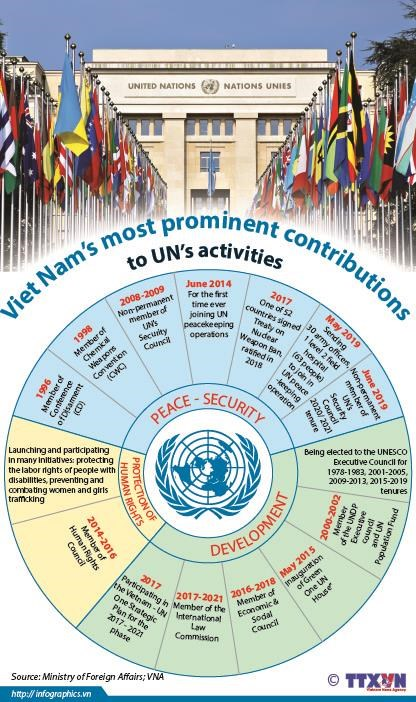 Viet Nam's most prominent contributions to UN's activities hinh anh 1