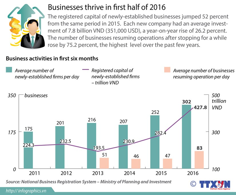 Businesses thrive in first half of 2016 hinh anh 1