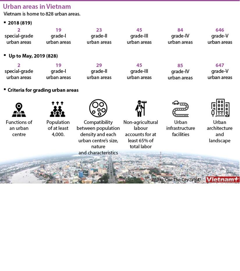 Fast urbanisation in Vietnam hinh anh 1