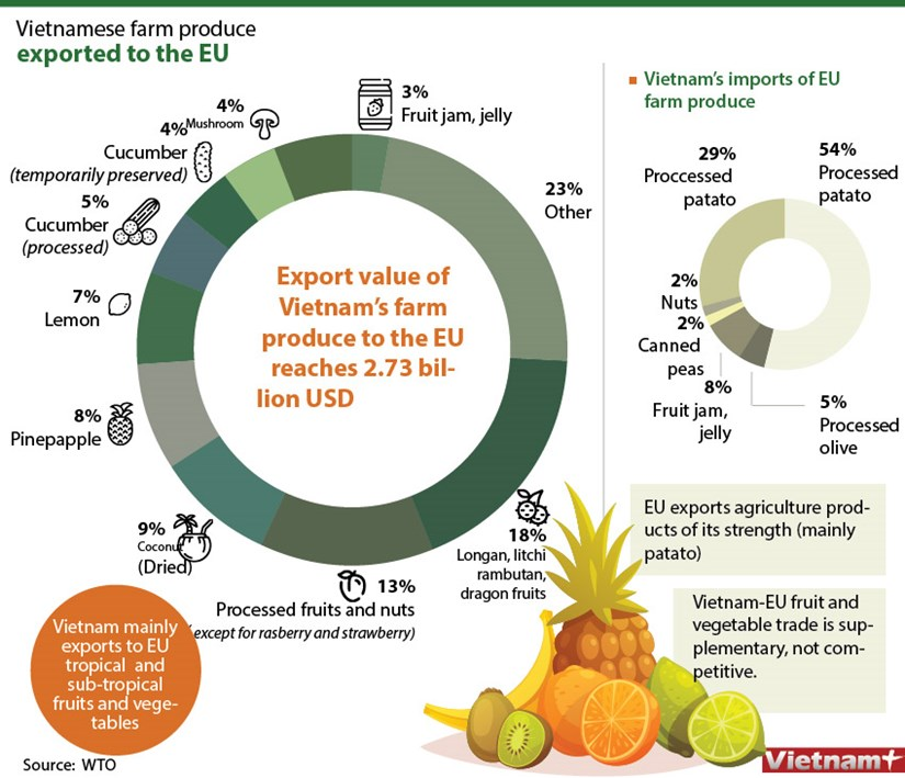 Two-way trade of Vietnam-EU fruit and vegetables sees high growth hinh anh 1