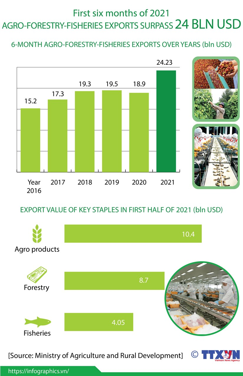 Agro-forestry-fisheries exports surpass 24 billion USD in H1 hinh anh 1