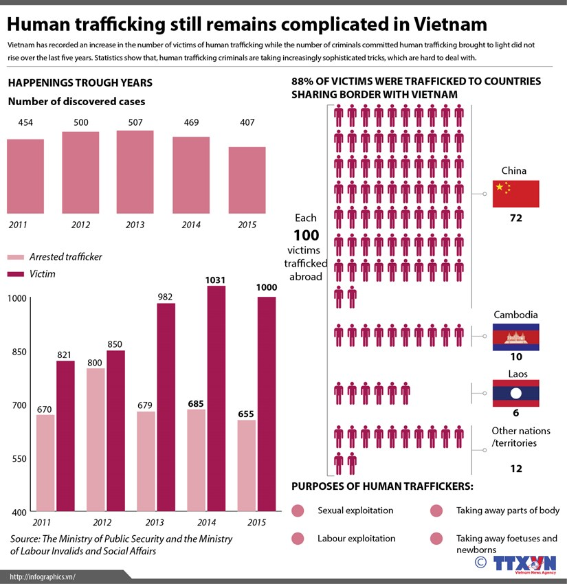 Human trafficking remains complicated in Vietnam hinh anh 1