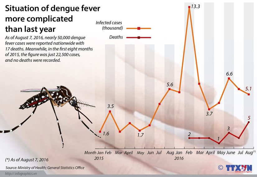Dengue fever become more complicated hinh anh 1