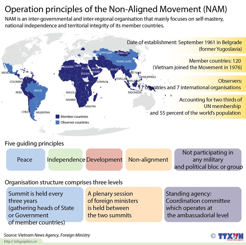 Operation principles of Non-Aligned Movement hinh anh 1