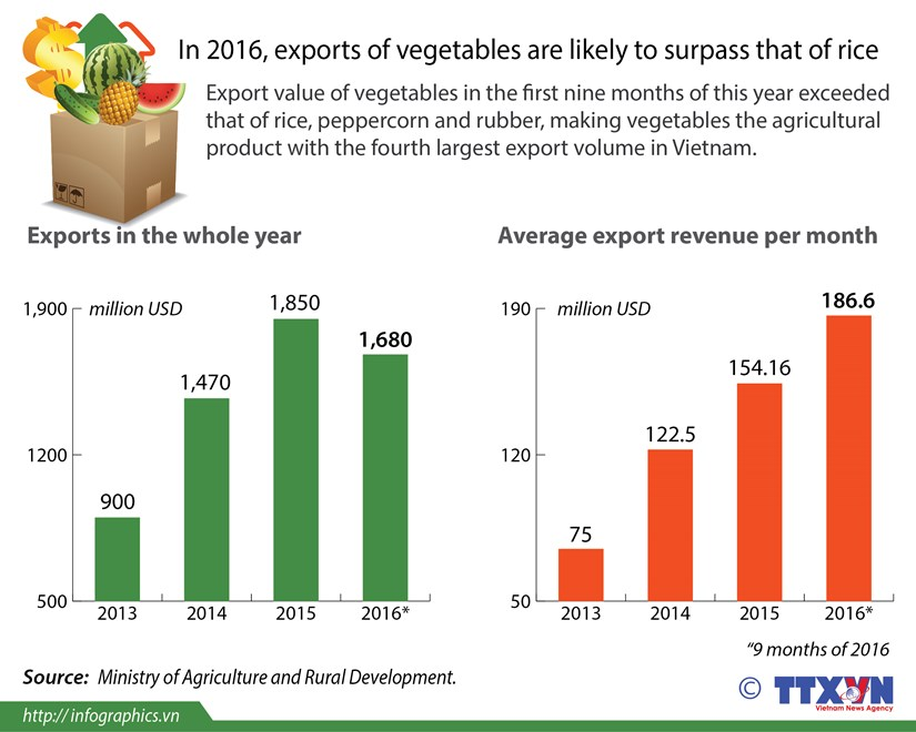 Vegetable exports may surpass that of rice hinh anh 1