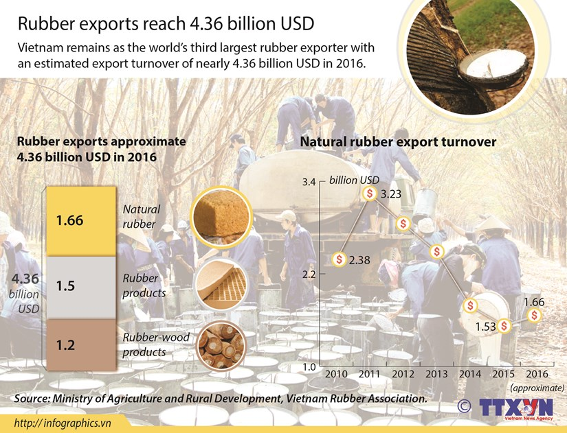 Rubber exports reach 4.36 billion USD hinh anh 1