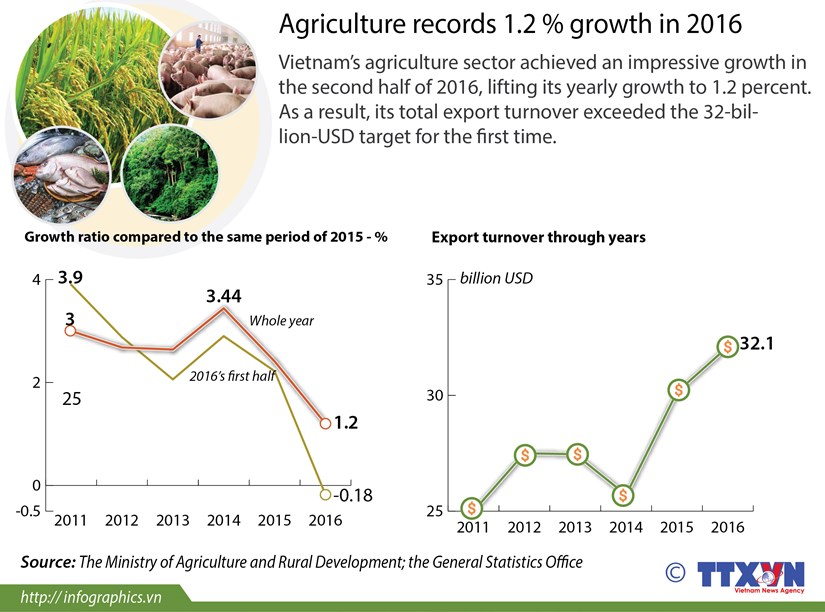 Agriculture records 1.2% growth in 2016 hinh anh 1