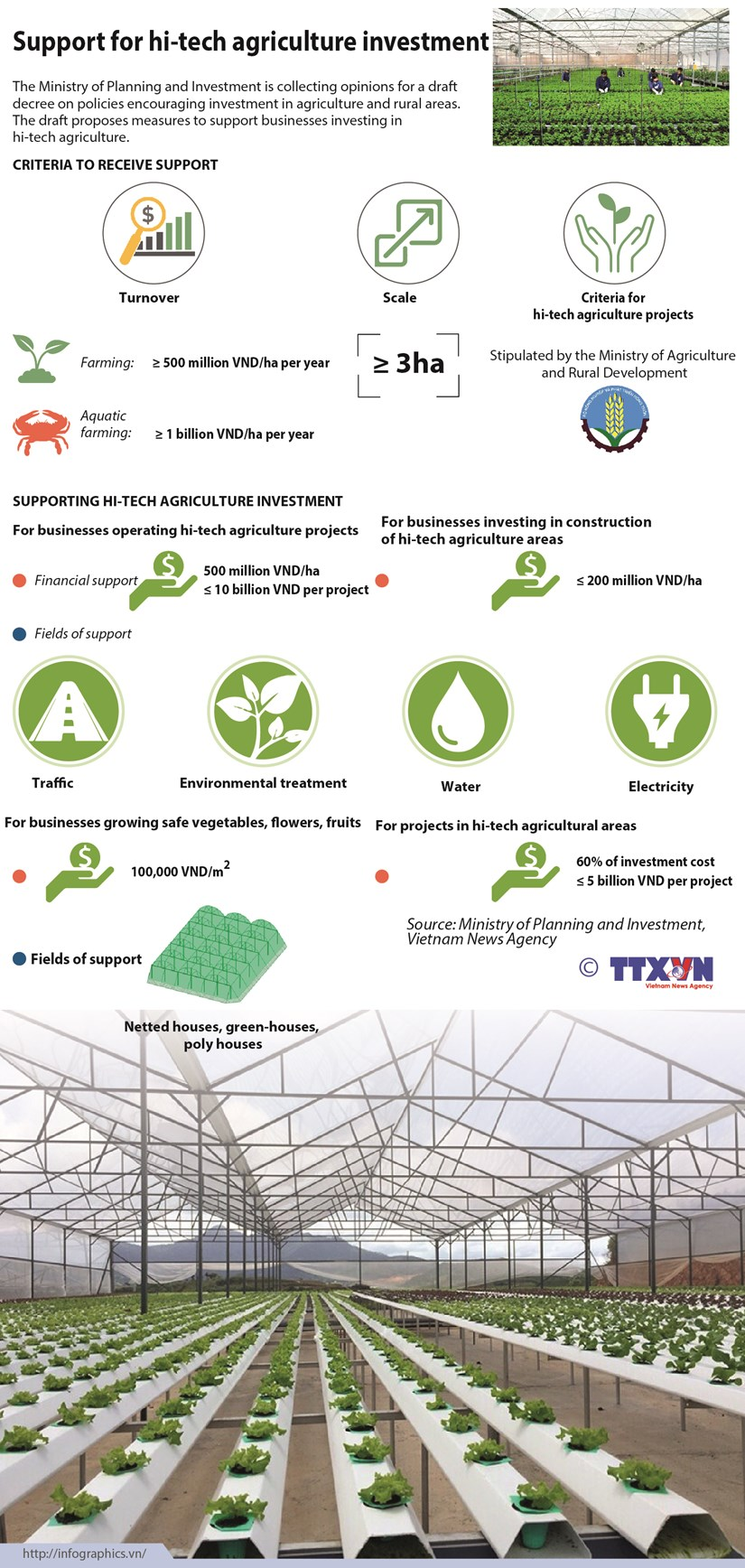 Support for hi-tech agriculture investment hinh anh 1
