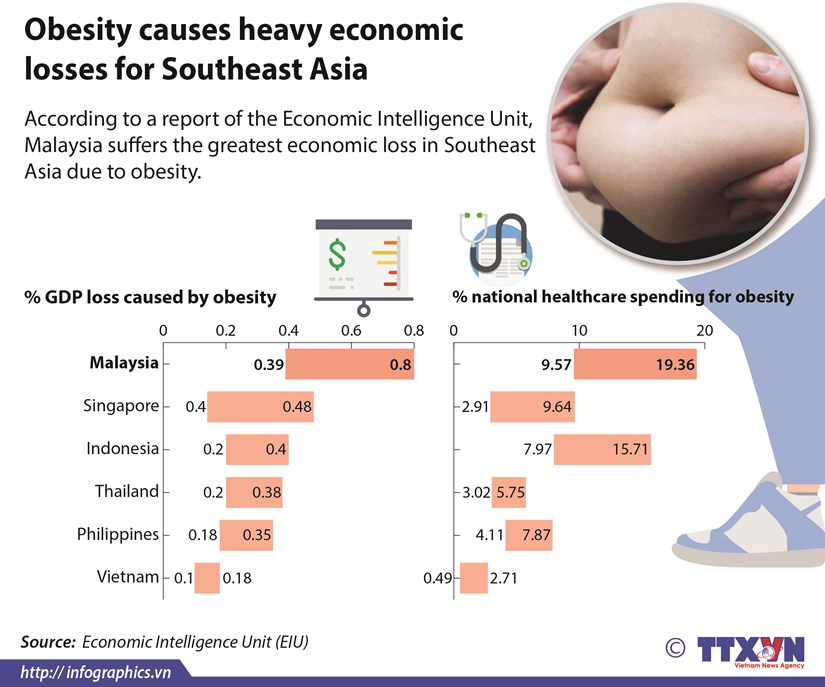 Obesity causes heavy economic losses for Southeast Asia hinh anh 1