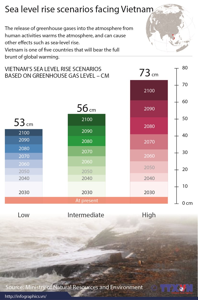 Sea level rise scenarios facing Vietnam hinh anh 1
