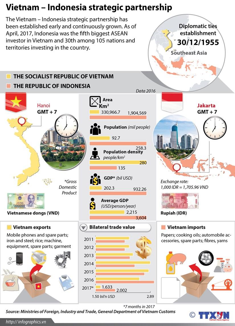 Vietnam - Indonesia strategic partnership hinh anh 1