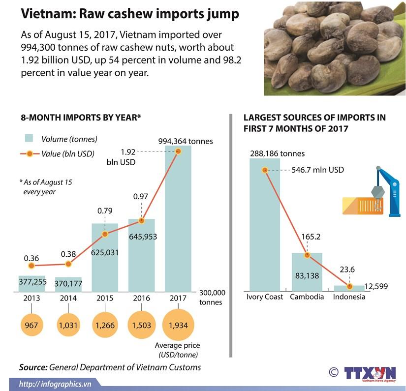 Vietnam: Raw cashew imports jump hinh anh 1