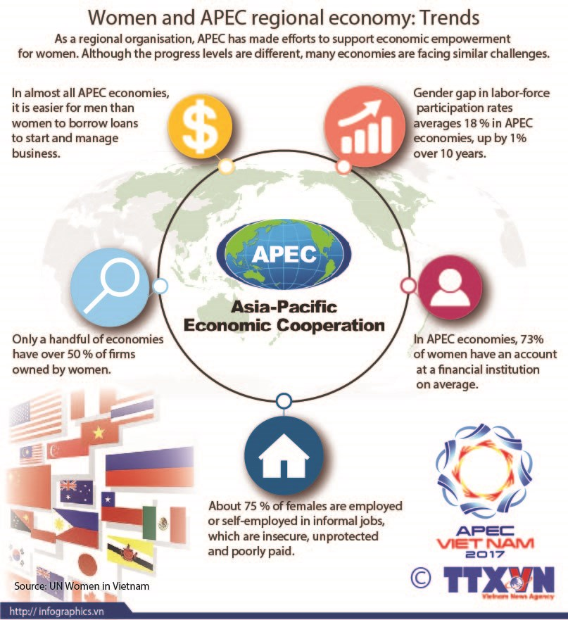Women and APEC regional economy: Trends hinh anh 1