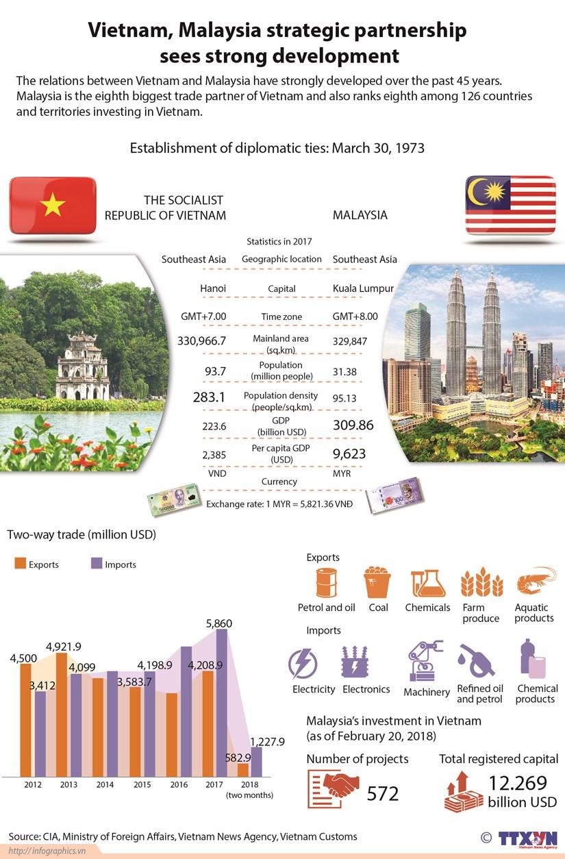 Vietnam, Malaysia strategic partnership sees strong development hinh anh 1