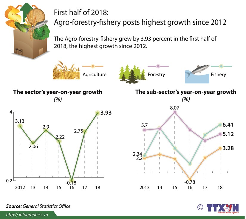 Agro-forestry-fishery in H1 posts highest growth since 2012 hinh anh 1