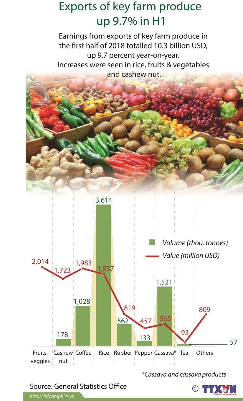 Exports of key farm produce up 9.7 percent in H1 hinh anh 1