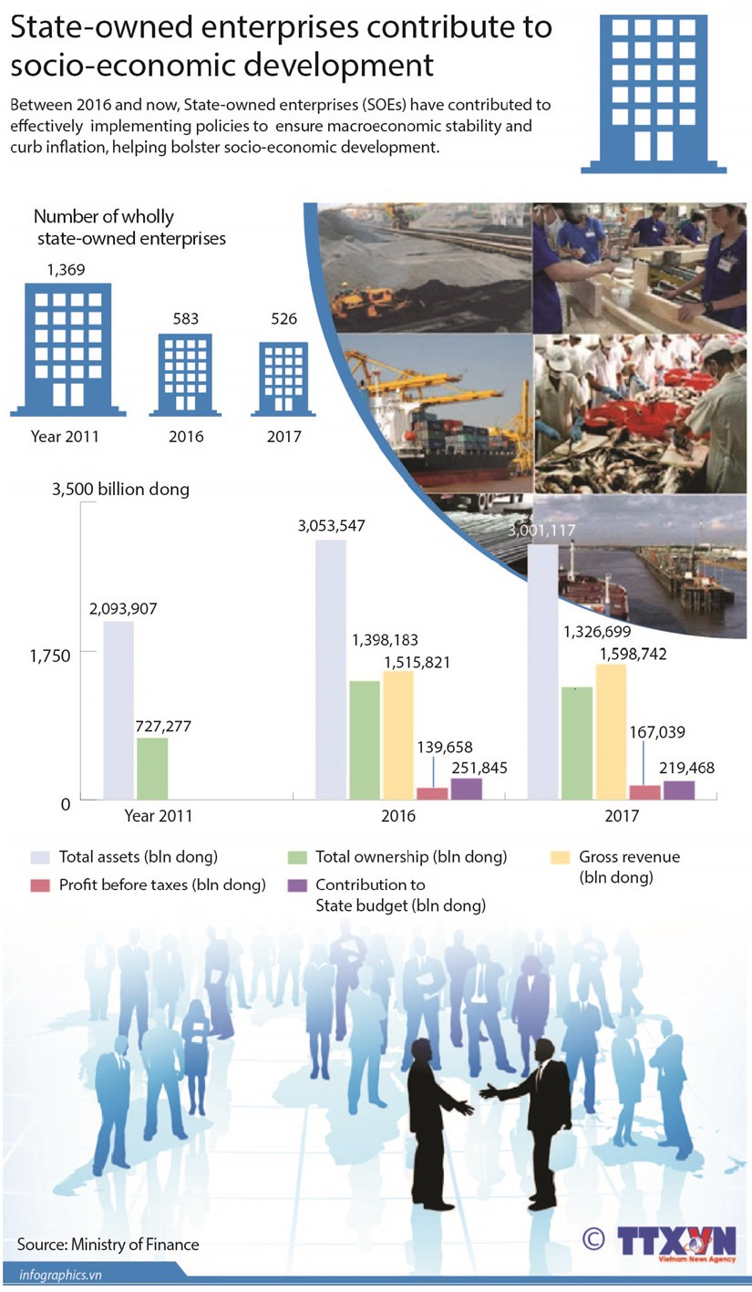 State-owned enterprises contribute to socio-economic development hinh anh 1