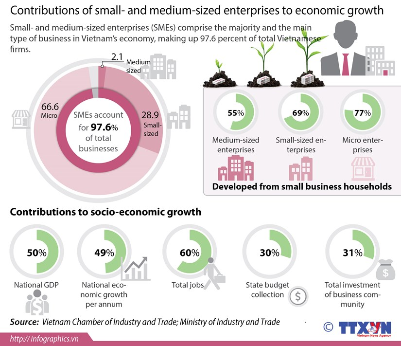 Majority of bussinesses being SMEs hinh anh 1
