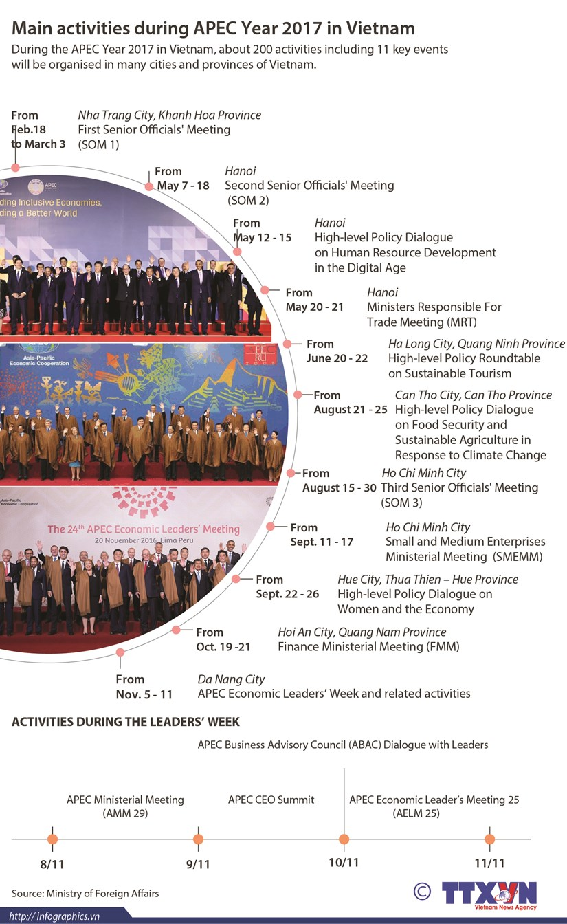 Main activities during APEC Year 2017 in Vietnam hinh anh 1