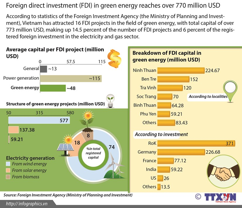 FDI in green energy reaches over 770 million USD hinh anh 1