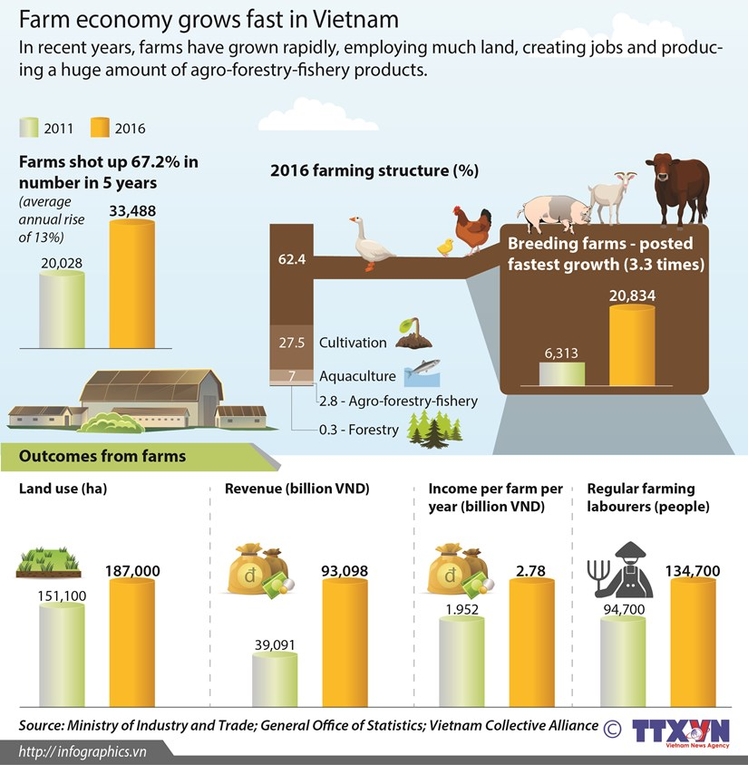 Farm economy grows fast in Vietnam hinh anh 1