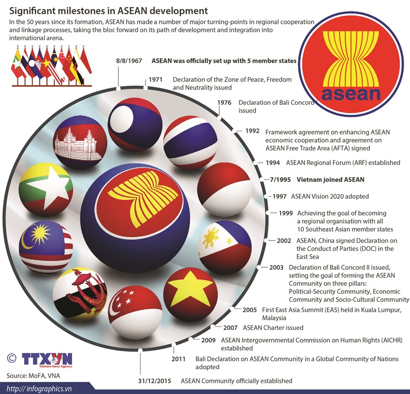 Significant milestones in ASEAN development hinh anh 1