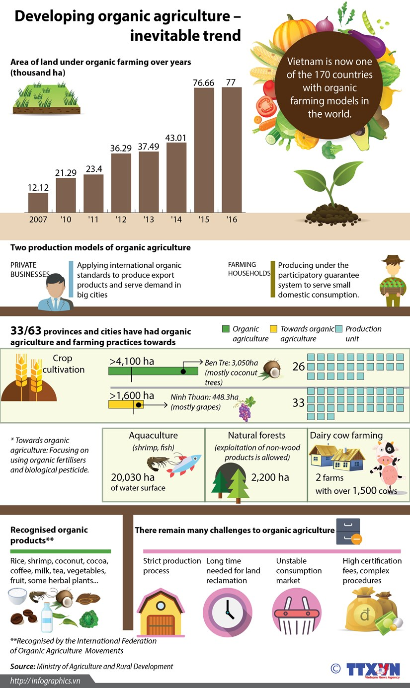 Developing organic agriculture - inevitable trend hinh anh 1