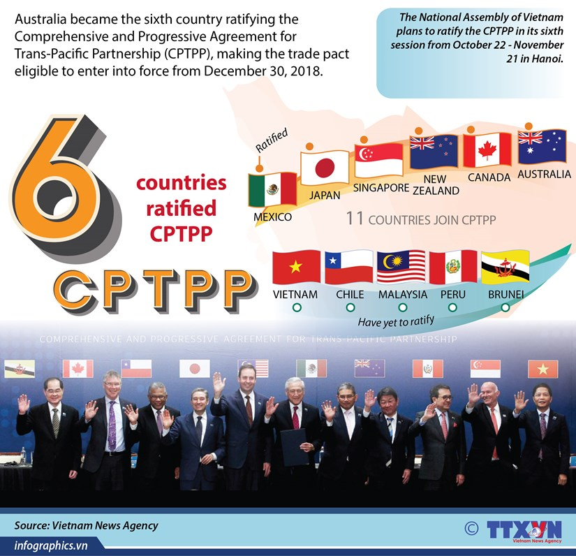 CPTPP to come into force in late 2018 hinh anh 1