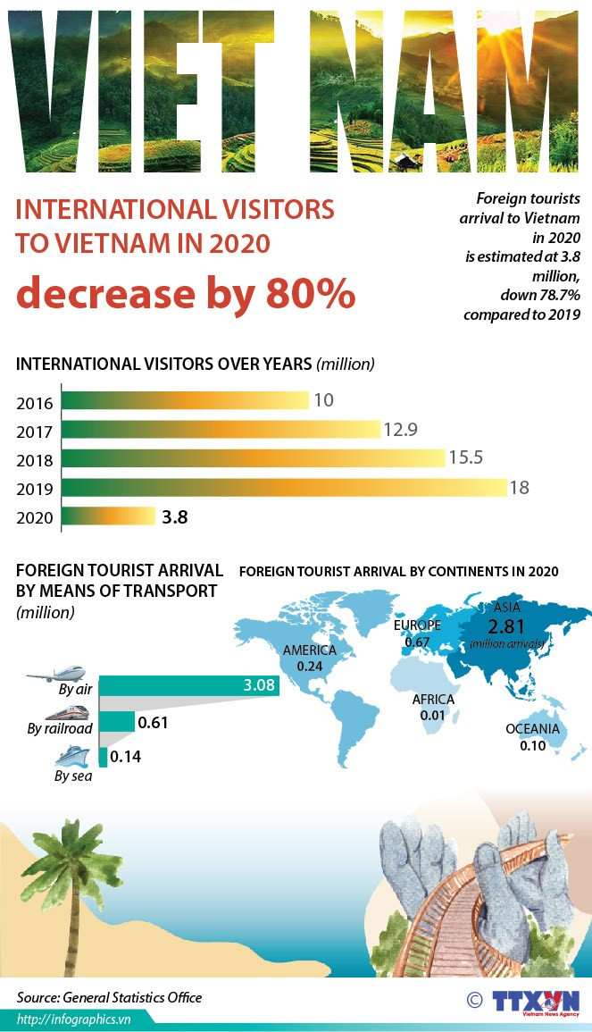 International visitors to Vietnam in 2020 decrease by 80 percent hinh anh 1
