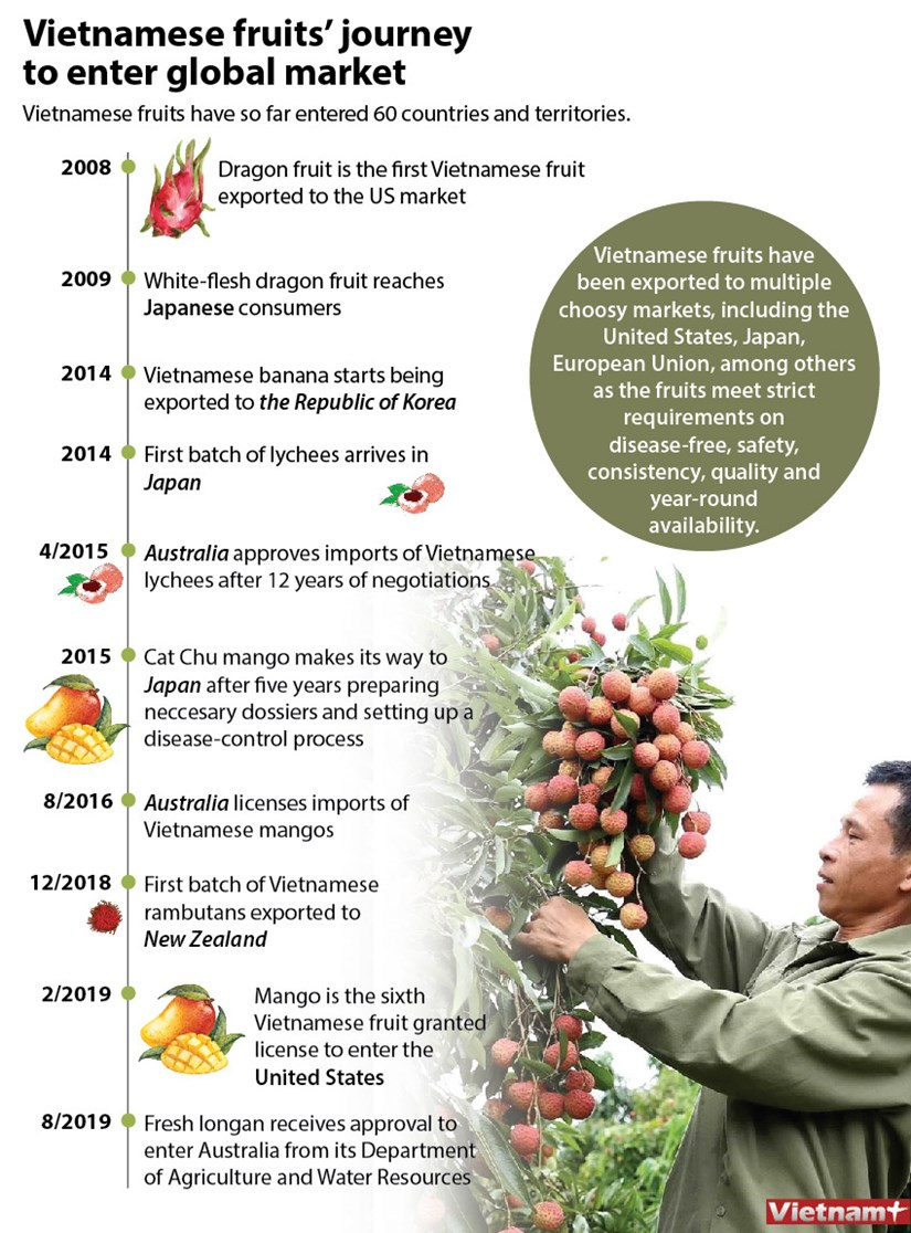 Vietnamese fruits' journey to enter global market hinh anh 1