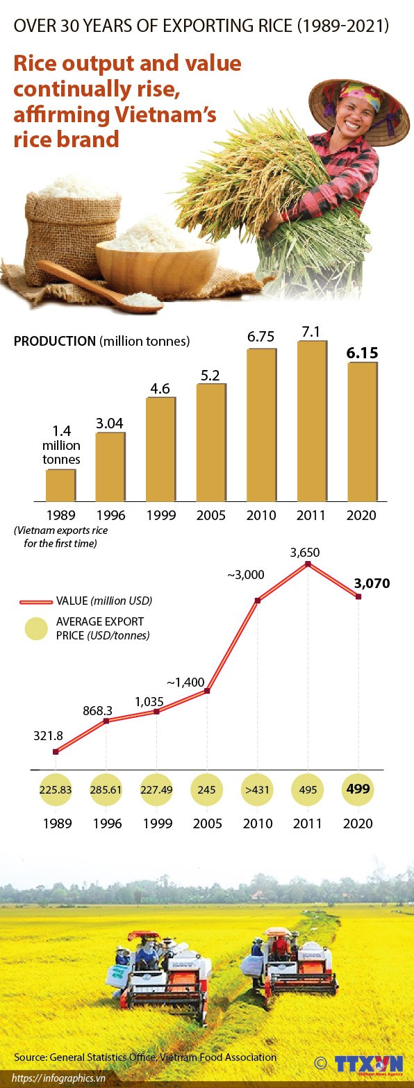 Vietnam elevates rice brand on global market hinh anh 1