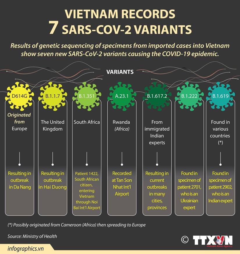 Vietnam records 7 SARS-CoV-2 variants hinh anh 1