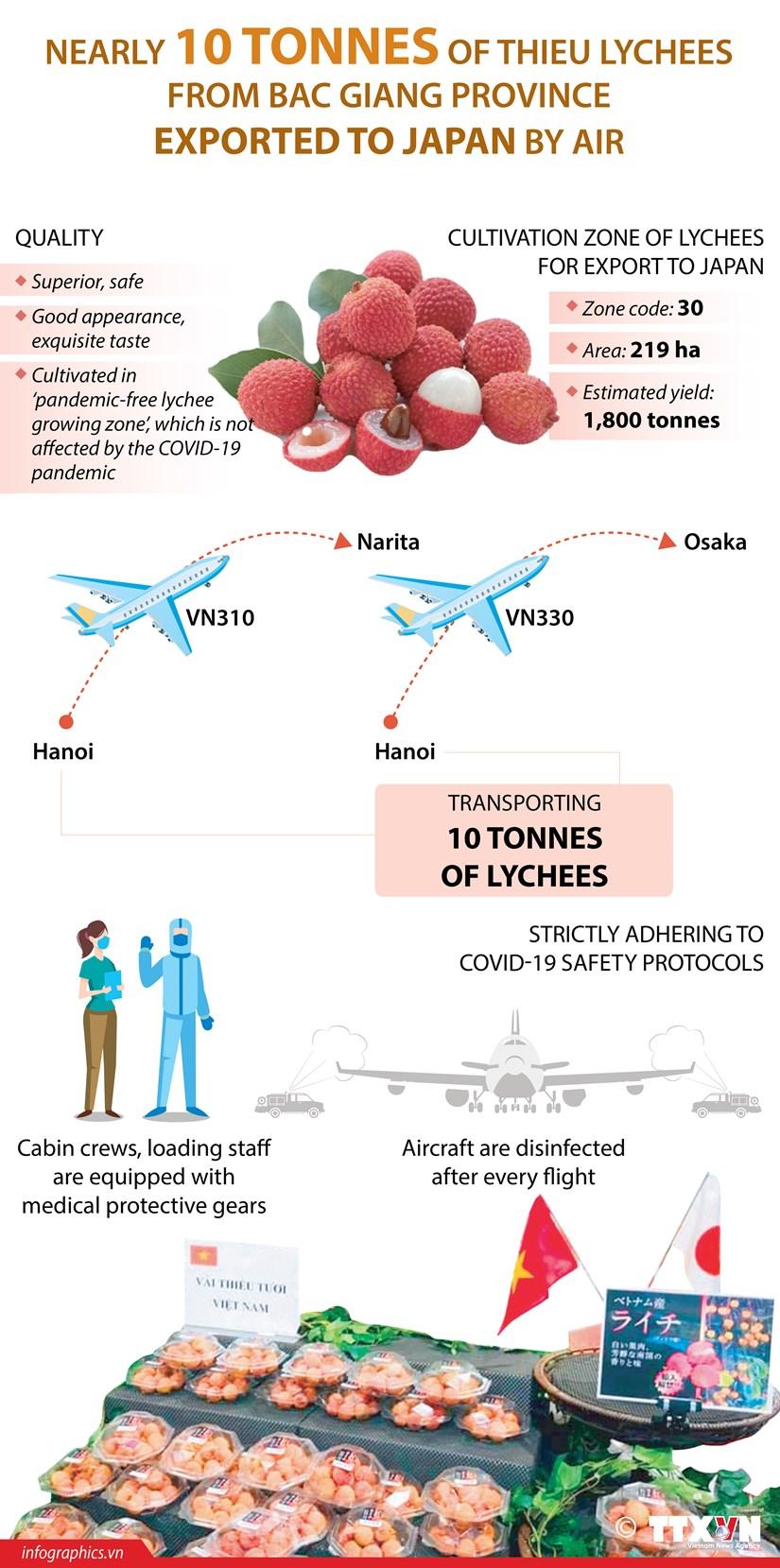 Bac Giang exports nearly 10 tonnes of Thieu lychees to Japan hinh anh 1