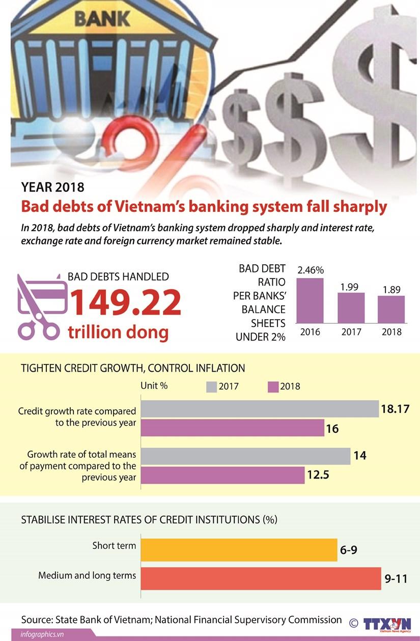 Vietnamese banks' bad debts fall sharply in 2018 hinh anh 1