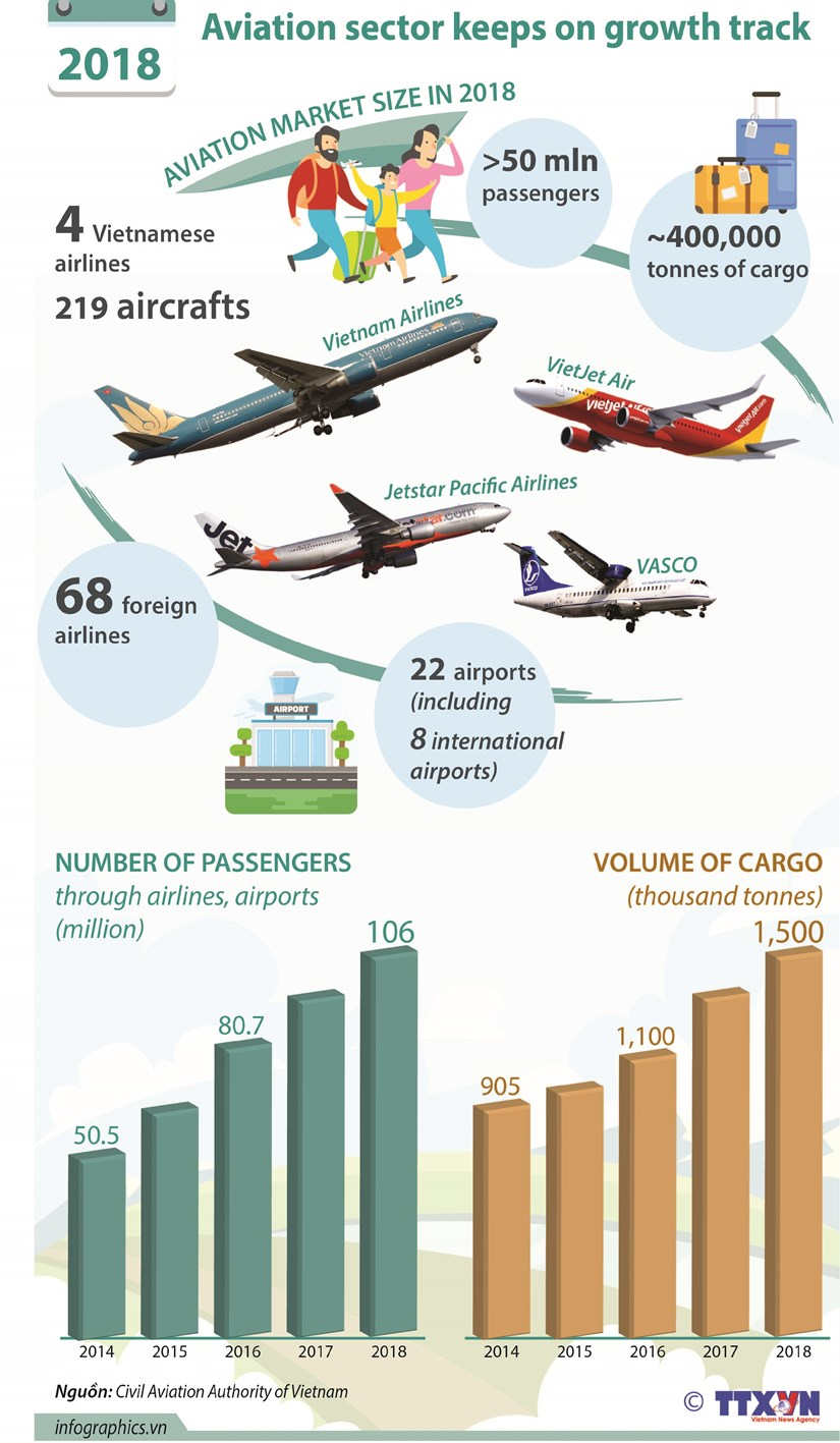 Aviation sector keeps on growth track hinh anh 1