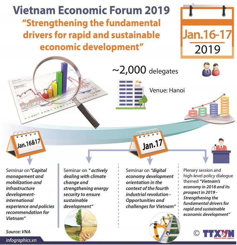 Vietnam Economic Forum 2019 hinh anh 1